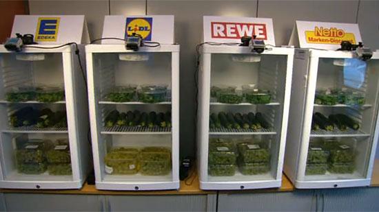 Gemüse beim Gammeln zusehen: Die ARD macht's möglich