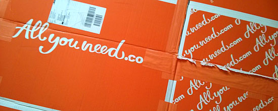 Paket mit Allyouneed.com-Logo