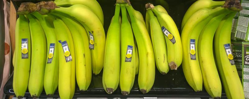 Konventionelle Bananen bei Edeka
