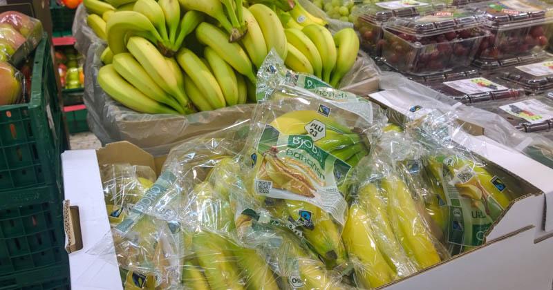 Bio-Bananen bei Netto (ohne Hund)