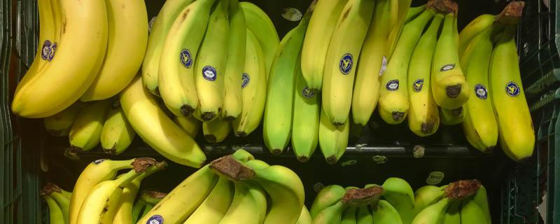 Bio-Bananen bei Kaiser's