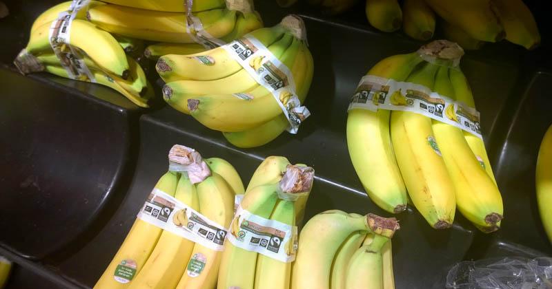 Fairtrade-Bananen bei Albert Heijn